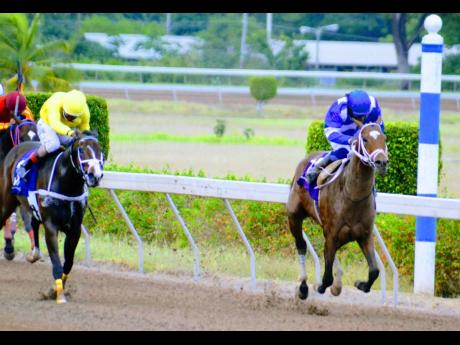 TREVOR'S CHOICE (left) placing second to NIPSTER in Saint Cecelia Cup on May 15 at  Caymana s Park.